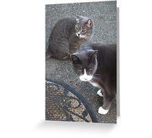 Morty And Lucy Greeting Card