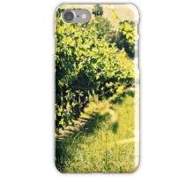 Vineyards 4 iPhone Case/Skin