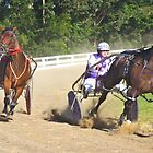 Action at the Nowra Show 2015 by Stethaki