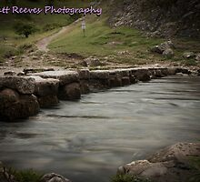 Stepping Stones by MattReeves