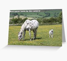 Smile for the camera! Greeting Card