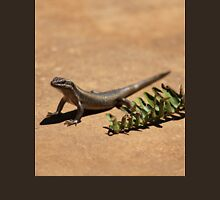 Interacting with wildlife - African Striped Skink T-Shirt
