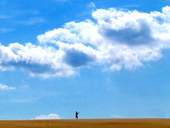 Sands Dunes at the Outer Banks by Alberto  DeJesus