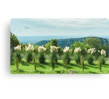 Pilgrims View Canvas Print
