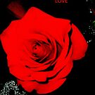 Red Love by JudithE