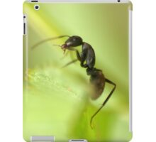 GReen Screen iPad Case/Skin