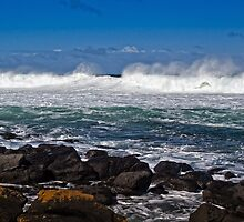 Wild surf at Pea Soup bay by Roger Neal