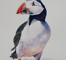 Mr. Puffin by Nicole Barros