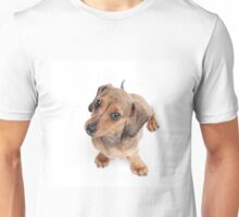 Dachshund Dance Unisex T-Shirt