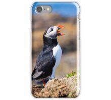 Puffin Treshnish Isles - Scotland Wildlife iPhone Case/Skin