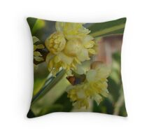The Glorious Buds of Bay Throw Pillow