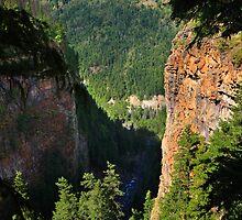 Spahats Creek Canyon by Charles Kosina