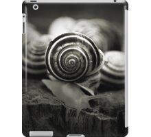 A Snail's World iPad Case/Skin