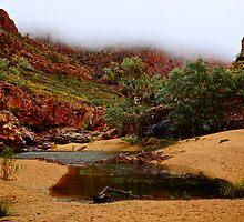 Foggy Ormiston Gorge - NT  by D-GaP