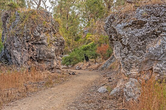 Boomerang Gorge, Yanchep National Park, Western Australia #2  by Elaine Teague