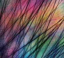Tropical Feather Abstract II by Sharon Johnstone