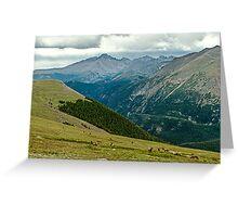 Longs Peak Elk Herd Greeting Card