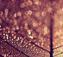 copper rain by Ingz