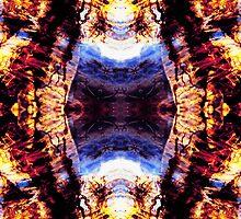 Wildfire - 2 by Shawna Rowe