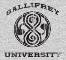 Doctor Who - Gallifrey University by meglauren
