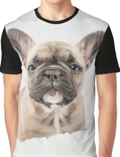 First Frenchie  Graphic T-Shirt