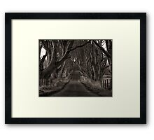 The Dark Hedges Of Armoy Framed Print