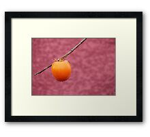 Two tone. Framed Print