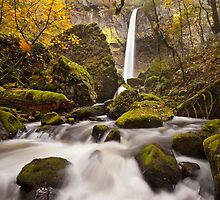 Elowah Falls, Columbia River Gorge by LWCPhoto