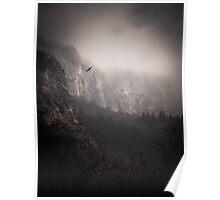 Landscape Fog Poster