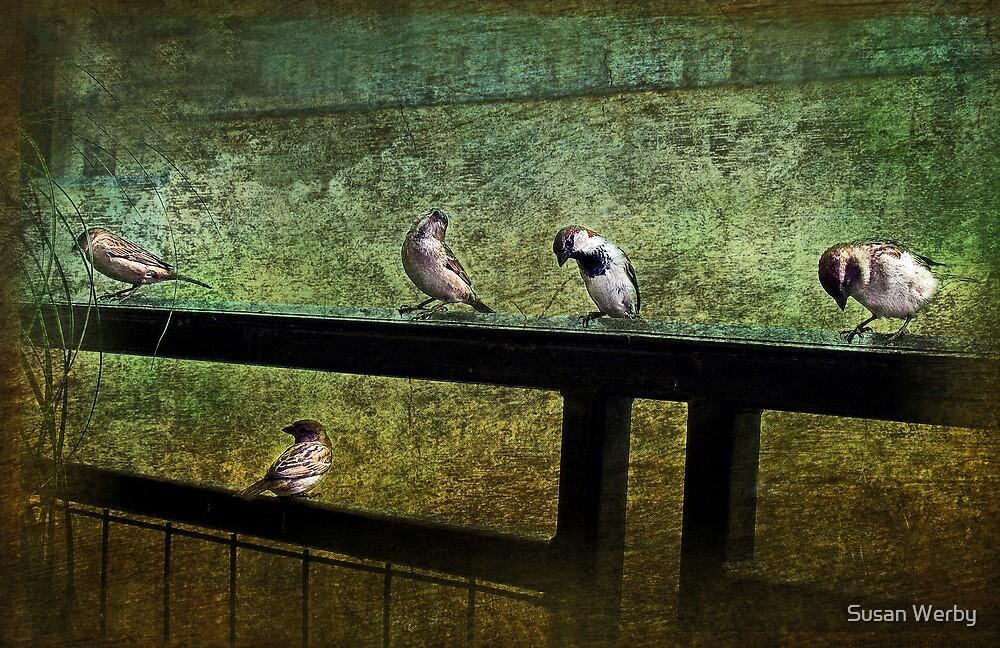 Twilight Sonata by Susan Werby