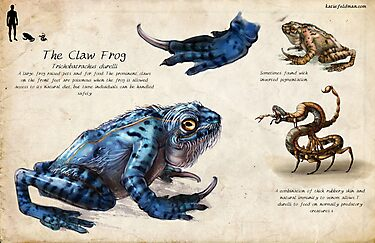 The Claw Frog by Katie Feldman
