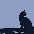 Black Cat  Sitting On the Fence by taiche