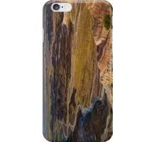 Painted Desert Arizona iPhone Case/Skin