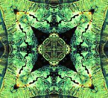 Aquatic Lace 12 by SRowe Art