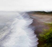 Rarangi Beach by Robyn Carter