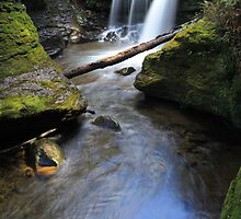 Liffey Falls- Tasmania by Mike Valigore