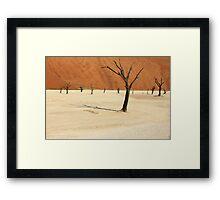 Dead Vlei- Namibia Framed Print