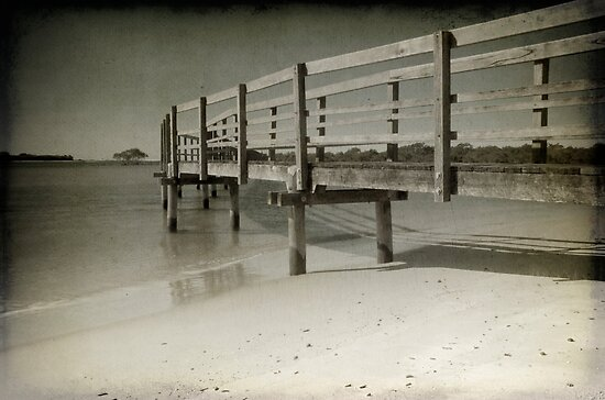 Urunga Boardwalk by Clare Colins
