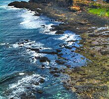 Cape Schanck. by Bette Devine