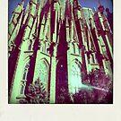 the breathtaking Sagrada Familia by anastasia papadouli