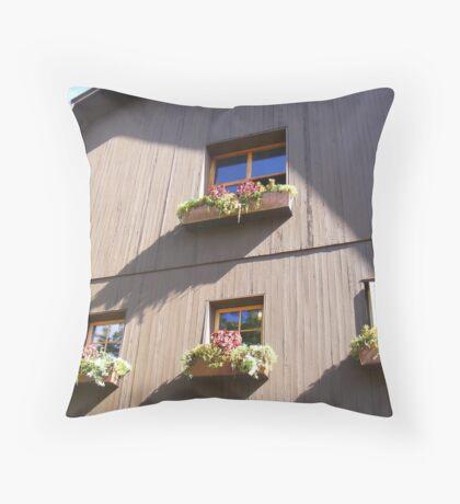 Outside Hermann J. Weimer Vineyards Throw Pillow