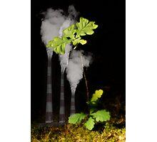 Ecology Photographic Print