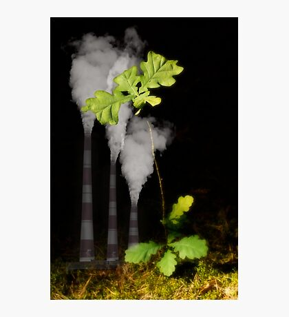 Ecology Photographic Print