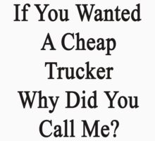 If You Wanted A Cheap Trucker Why Did You Call Me?  by supernova23