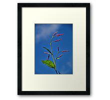 Gently Swaying Framed Print