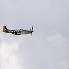 P-51 Mustang by Elliot2970