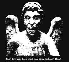 Weeping Angel, Don't Blink... by Mynameisparrish