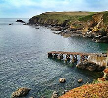Lizard Point, Cornwall by Ludwig Wagner