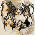 Bernese Mountain Dog w/Ghost Image by BarbBarcikKeith