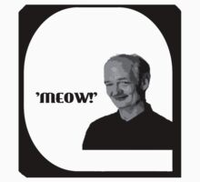 Whose line is it anyway- Colin Mochrie 'Meow'  by SideoftheAngels